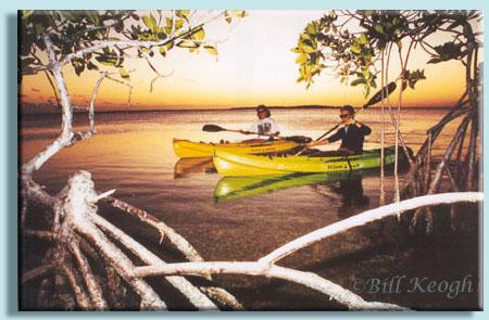 Keys Kayak Tours